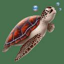 Turtle Icon 128x128px